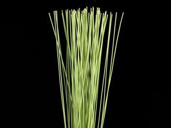 Flexi Grass Australia